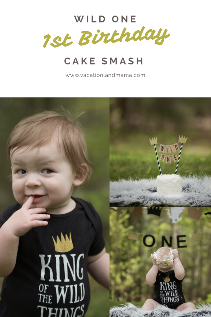 Wild One Cake Smash First Birthday Cake Smash