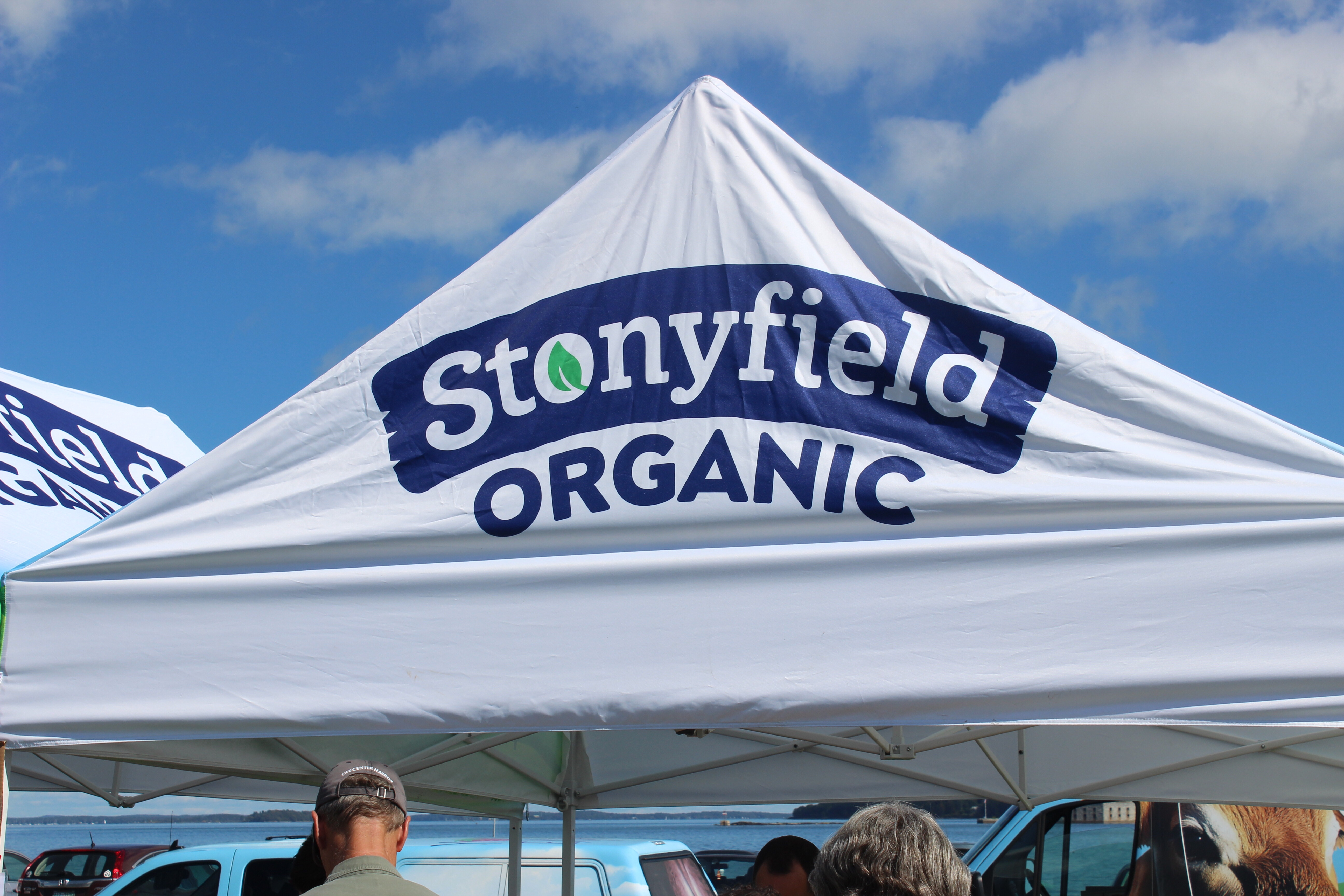 StonyFIELDS Initiative featuring Bug Light Park